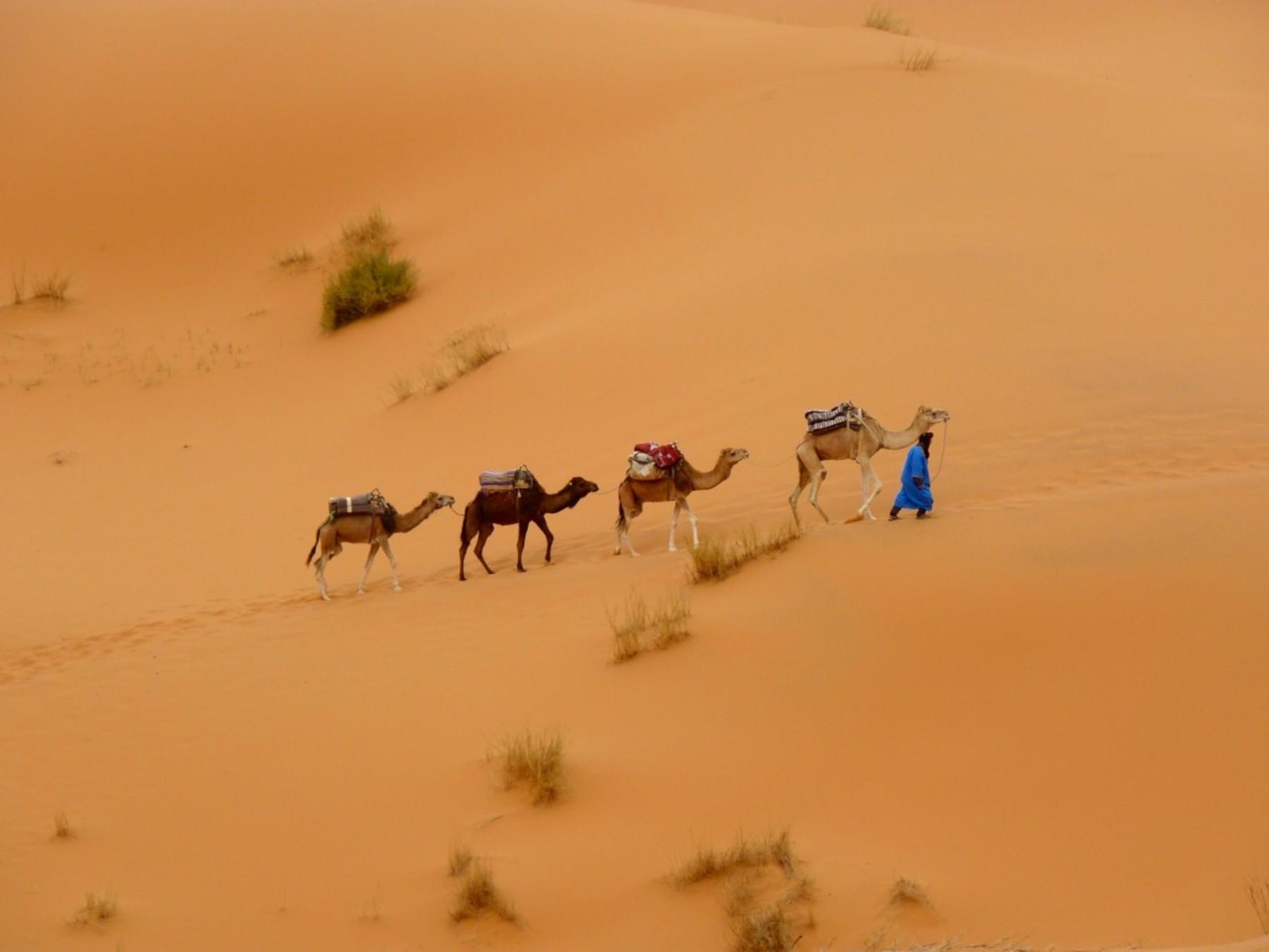 The Erg Chebi Dunes