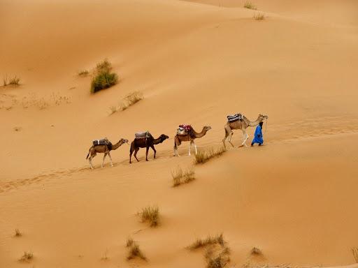 Erg Chebi Dunes / Morocco / Chef Chris Colburn