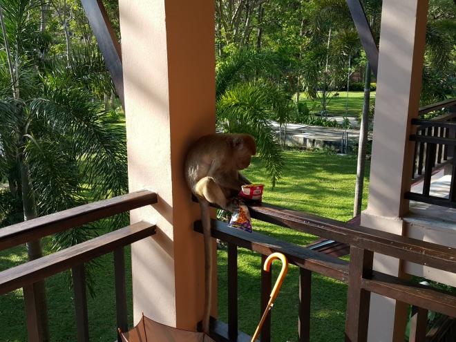 Railay Princess | Monkey | Chef Chris Colburn